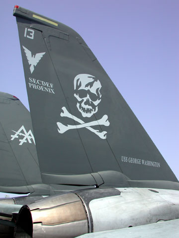 VF 103 'The Jolly Rogers', Brother Rumsfelds F-14