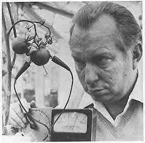 L. Ron Hubbard using his 'e-meter' on some cherry tomatoes